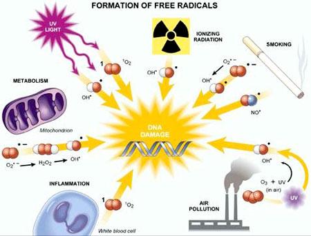 free-radical-metals